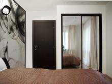 Темные двери в интерьере квартиры фото