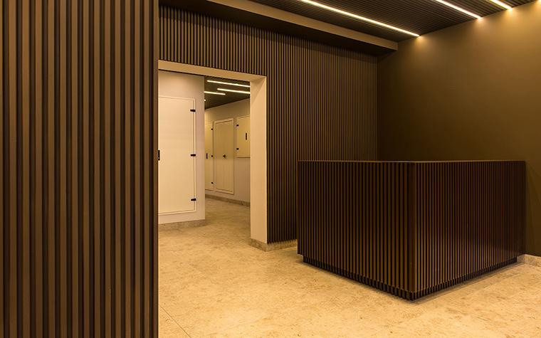 Многоквартирный дом. холл из проекта , фото №54623