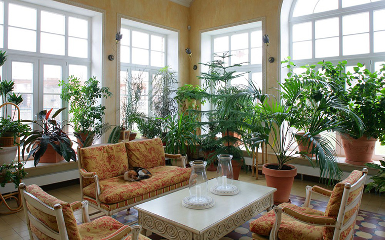 интерьер зимнего сада - фото № 7717