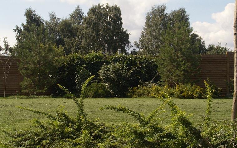 Варианты ландшафтного дизайна дачных участков: фото дизайна участка