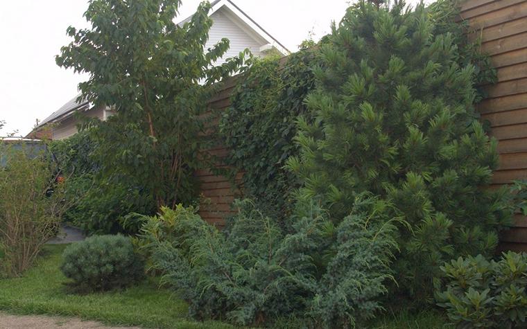 Загородный дом. ограда забор из проекта , фото №8378