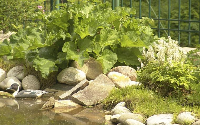 Фото № 8392 водоем  Загородный дом
