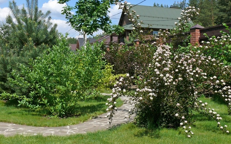 Загородный дом. участок из проекта , фото №8626