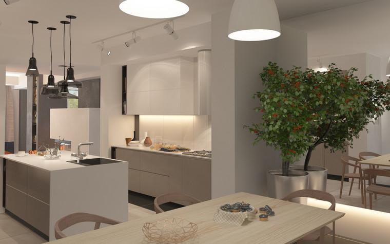 Загородный дом. кухня из проекта Дизайн частного дома для супружеской пары, фото №89095