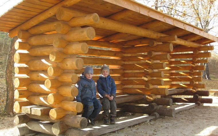 Фото № 11180 детская площадка  Загородный дом