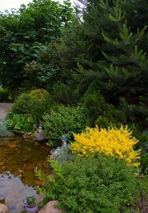 Фото № 12964 водоем  Загородный дом