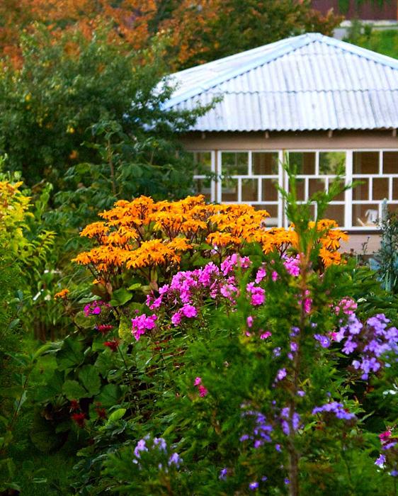 Загородный дом. участок из проекта , фото №13400
