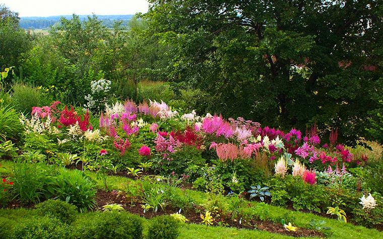 Загородный дом. цветник из проекта , фото №13373