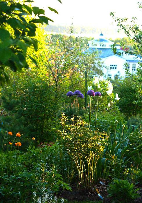 Загородный дом. участок из проекта , фото №13418