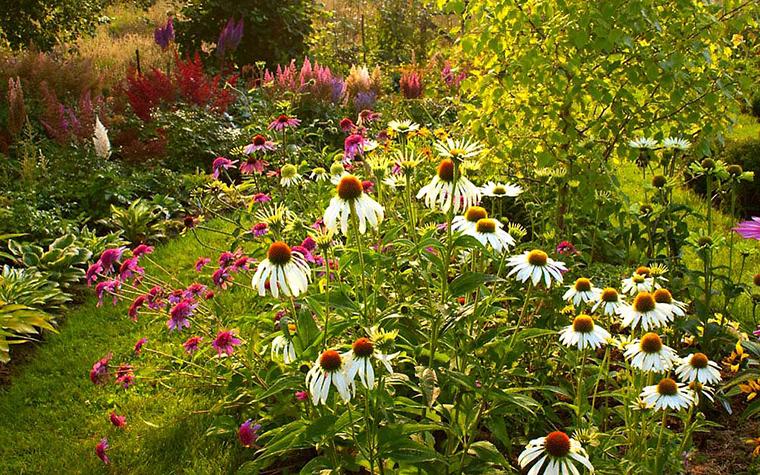 Загородный дом. цветник из проекта , фото №13456