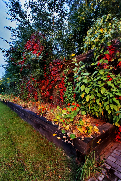 Фото № 15713 ограда забор  Загородный дом