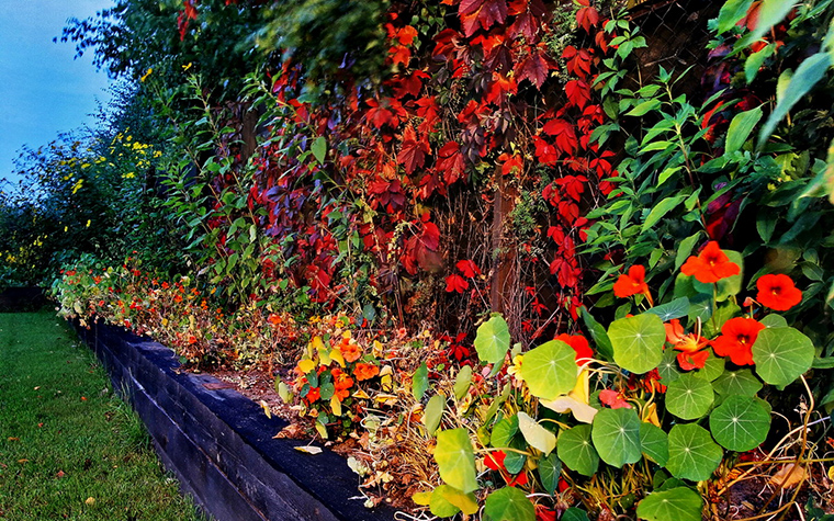 Фото № 15712 ограда забор  Загородный дом