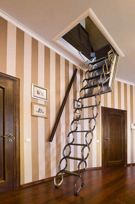 интерьер холла - фото № 18548