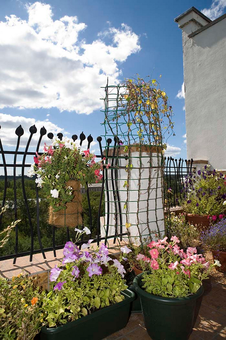 Фото веранда лоджия Загородный дом