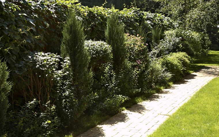 Загородный дом. дорожка из проекта , фото №20551