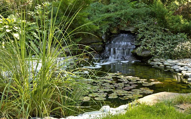 Загородный дом. водоем из проекта , фото №20556