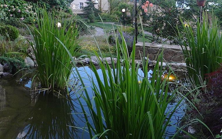 Загородный дом. водоем из проекта , фото №29588