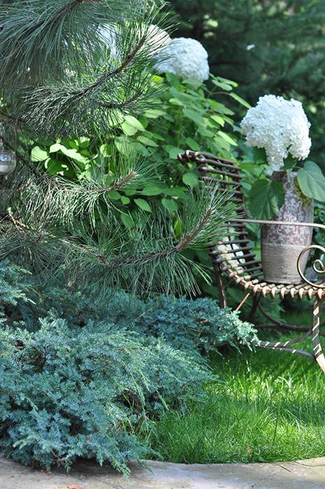 Загородный дом. участок из проекта , фото №30372