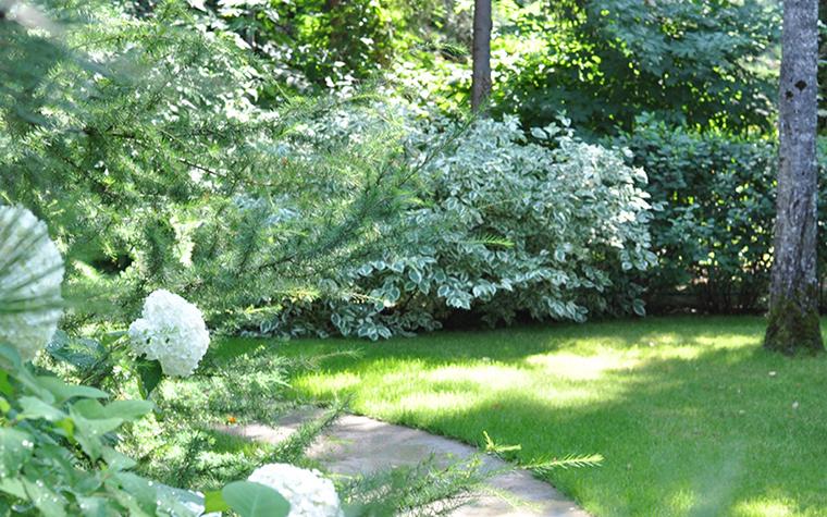 Загородный дом. участок из проекта , фото №30373