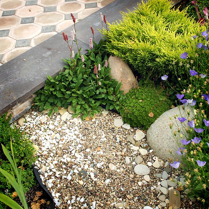 Загородный дом. цветник из проекта , фото №34544