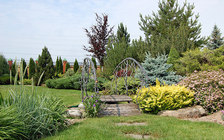 сады - фото № 38588