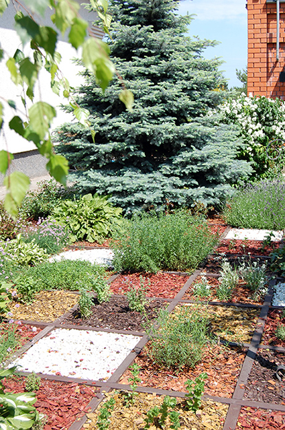 сады - фото № 38592