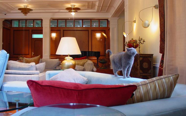 Фото № 41174 гостиная  Загородный дом