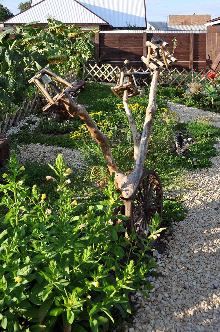 сады - фото № 49416