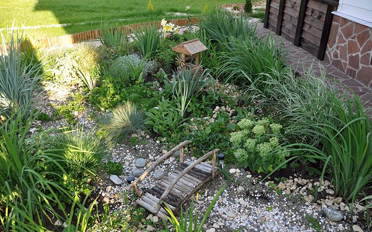 сады - фото № 49417