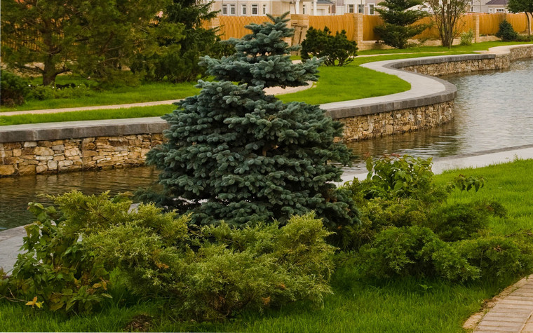 Загородный дом. водоем из проекта , фото №69974
