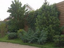 Фото ограда забор Загородный дом