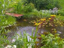 Загородный дом «», водоем . Фото № 2915