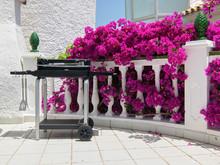 Загородный дом «Архитектура дома и дизайн интерьера виллы в Испании», барбекю  . Фото № 25844, автор Старых Станислав