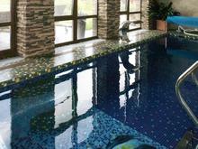 Загородный дом «Гостевой дом с бассейном», бассейн . Фото № 26874, автор Чащина Оксана