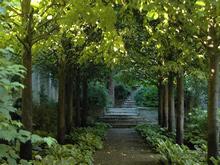 Загородный дом «», дорожка . Фото № 20220, автор AMG-Project