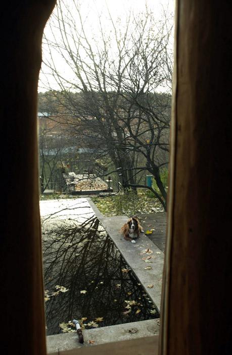 Загородный дом «», водоем, фото из проекта