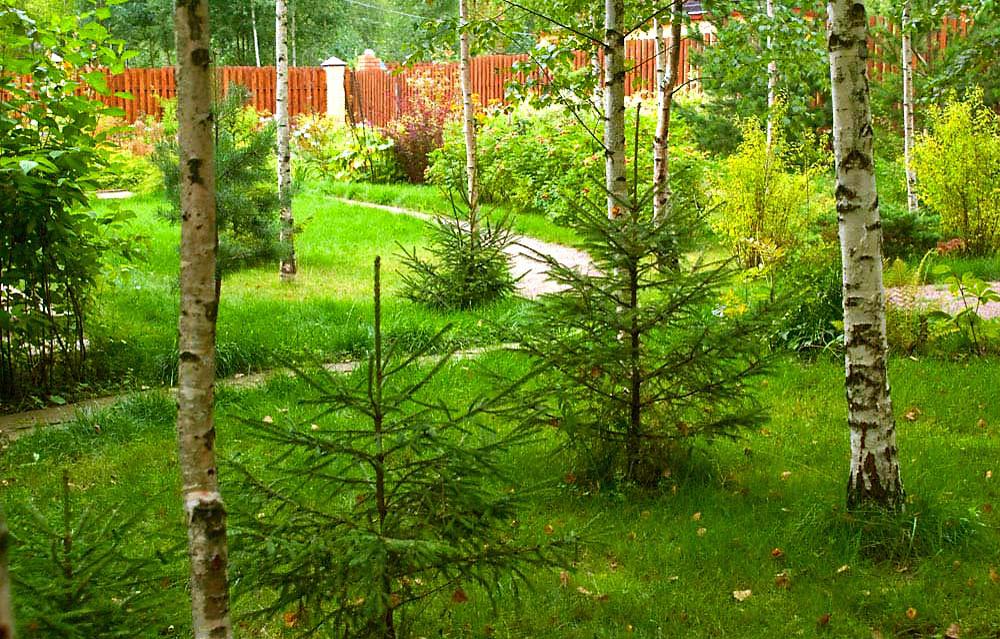 Загородный дом «», дорожка, фото из проекта