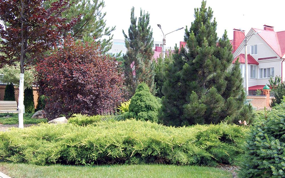 Загородный дом «», сады, фото из проекта