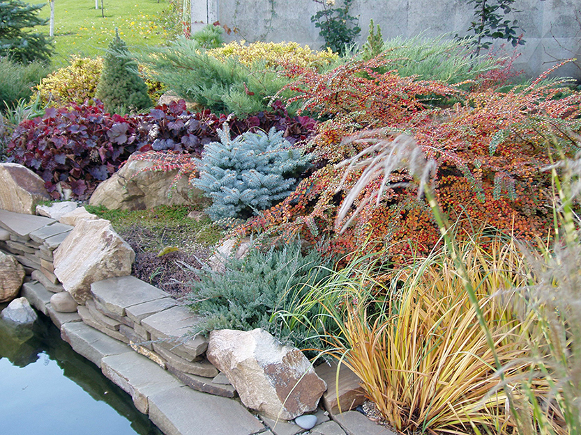 Фото сады Загородный дом