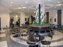 Кафе в бизнес комплексе Деловой квартал, фото № 8491, Безирганов Михаил