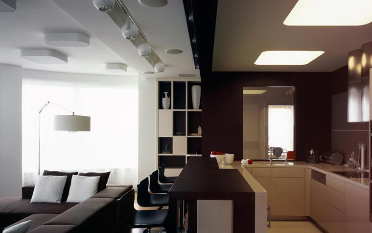 Квартира. кухня из проекта , фото №5889