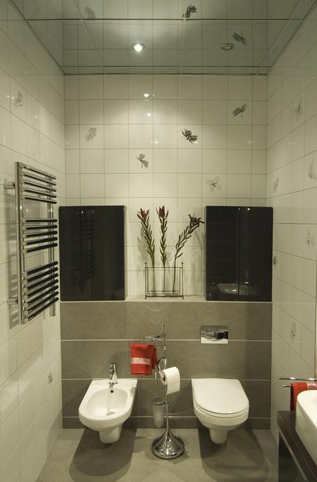 Квартира. ванная из проекта , фото №8443