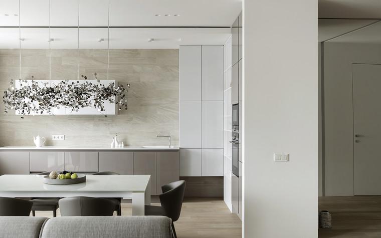Квартира. кухня из проекта ЖК Мичуринский, фото №82207