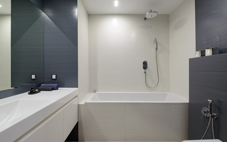 Квартира. ванная из проекта Сибирский блюз, фото №98293