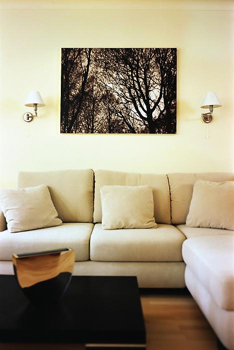 гостиная - фото № 13104