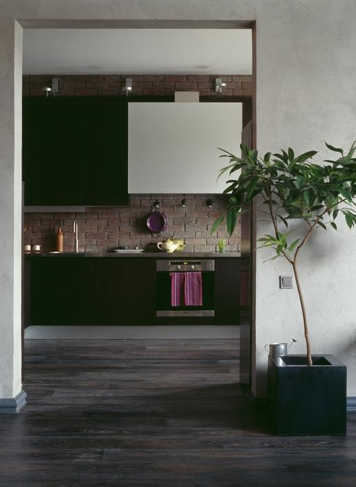 Квартира. кухня из проекта , фото №15645