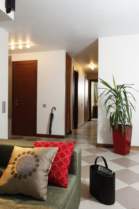 Квартира. холл из проекта , фото №15810