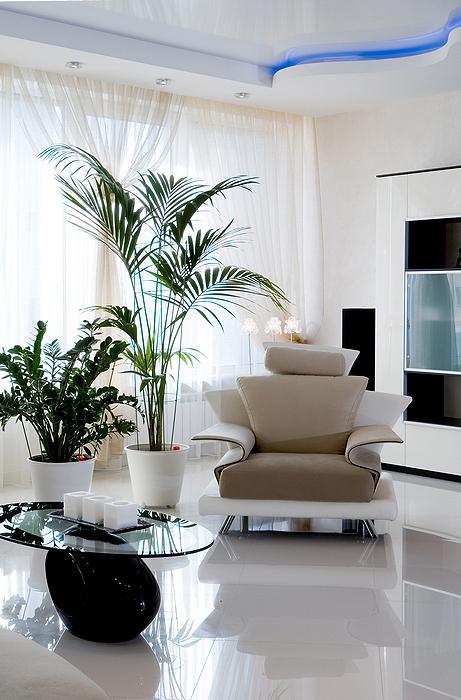 интерьер гостиной - фото № 16181