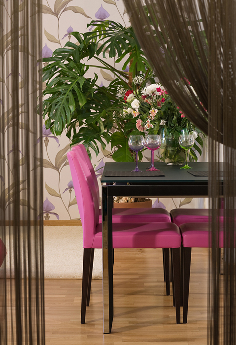 интерьер столовой - фото № 16530