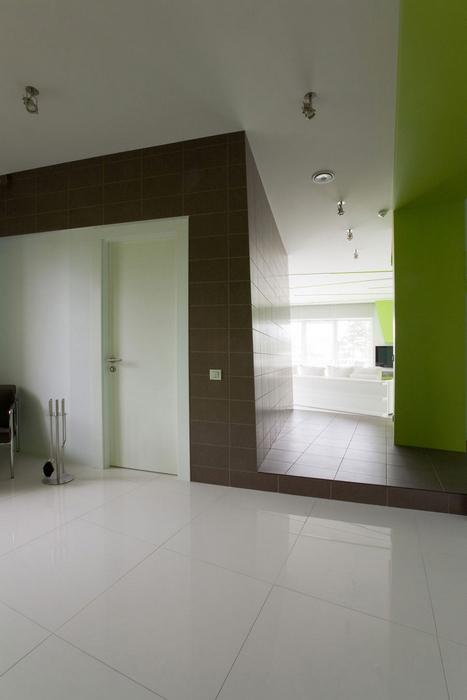 Квартира. холл из проекта , фото №17367
